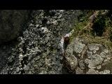 Остаться в живых (Lost). 1 сезон. 5 серия. Озвучка LostFilm